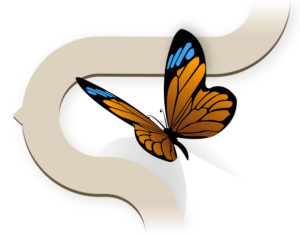 illustration - blue, orange, and black butterfly - CHANGE YOUR THINKING